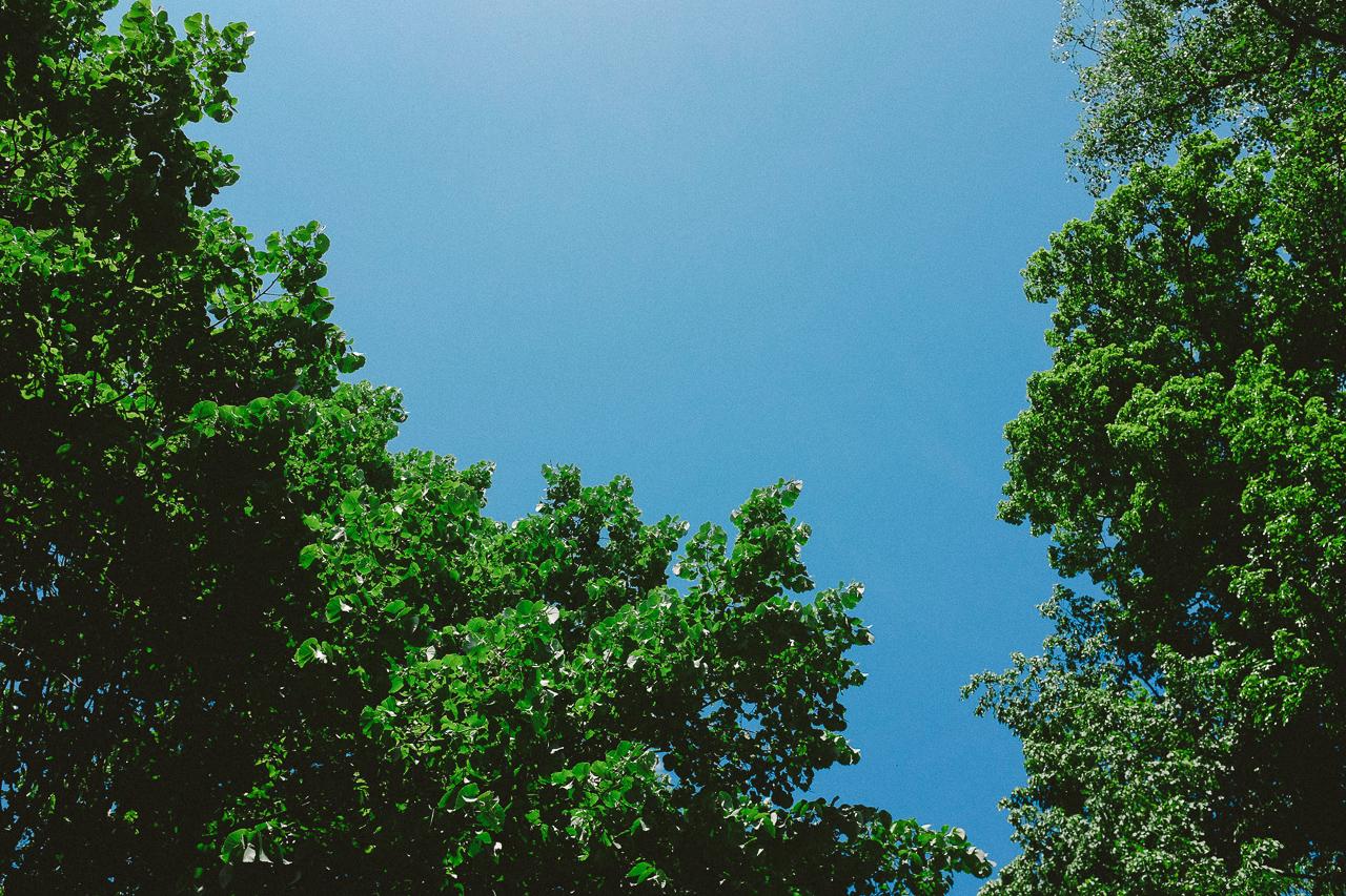 himmel wiesbaden 2 Sky above Wiesbaden